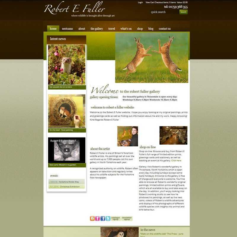 Graphicz Website Portfolio